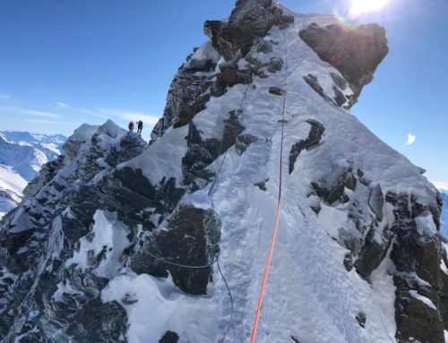 Großglockner mit Ski